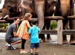 Bali-Zoo27-150x110