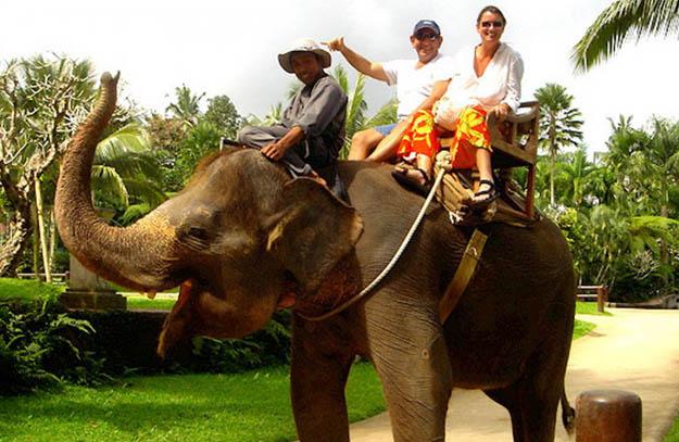 bakas-elephant1