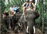 bakas-elephant5-150x110